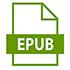 "E-pub icon with the text ""Accessible E-pub"" written below."